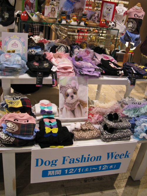 Dog Fashion Week